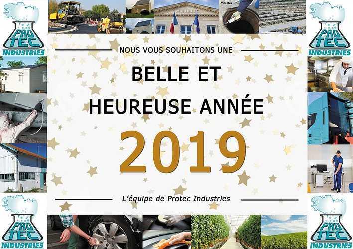 Bonne année 2019 0